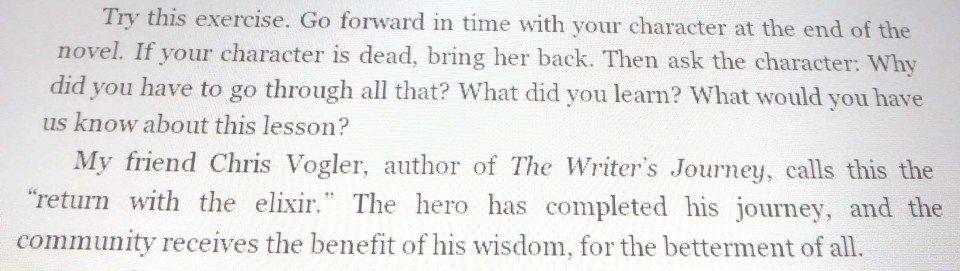 sentido de una novela
