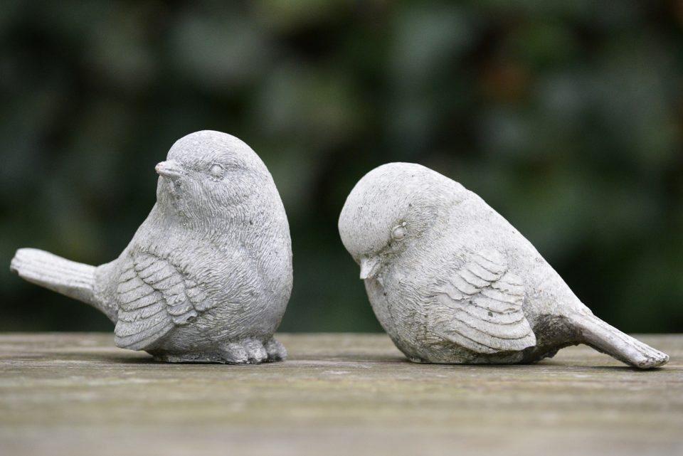 birds-276191_1920-960x641.jpg